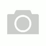 New Avanti 4 Egg Poacher Ceramic Cups Stainless Steel 20cm